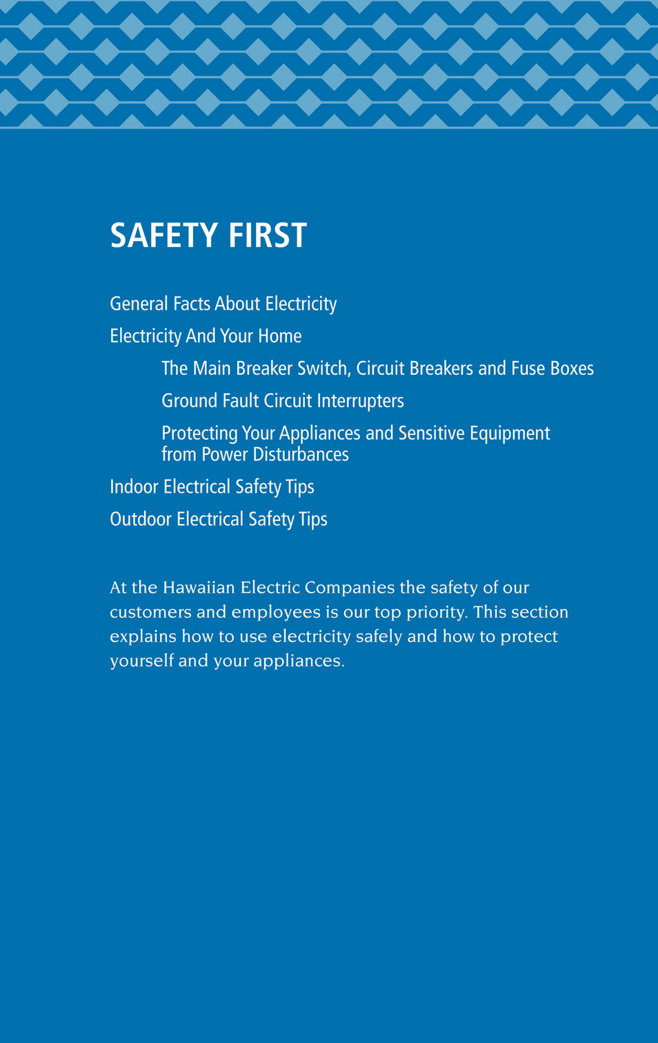 ... SAFETY FIRST General Facts About Electricity Electricity And Your Home  The Main Breaker Switch, Circuit.